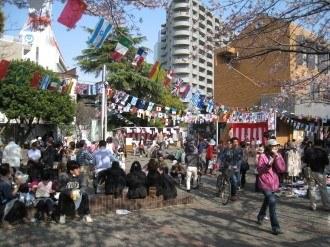昨年の丸子・小杉桜まつり(小杉会場 総合自治会館前)