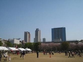 丸子花見市会場 日本医大グラウンド
