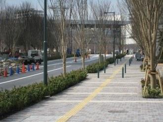 地上からの武蔵小杉駅南口線