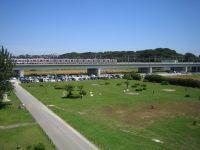 多摩川緑地1