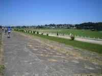 多摩川緑地2