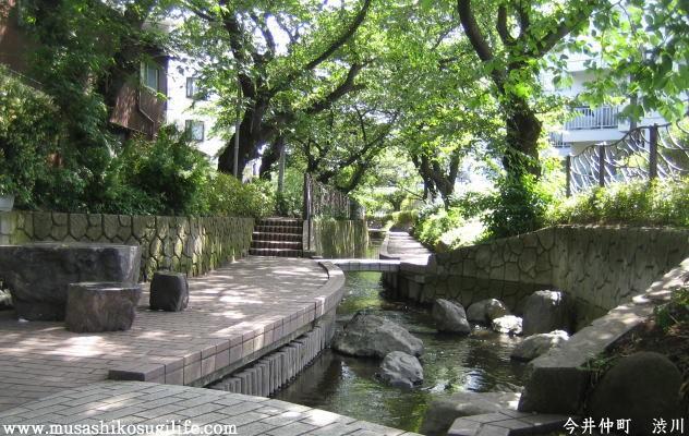 武蔵小杉ライフ トップ画像