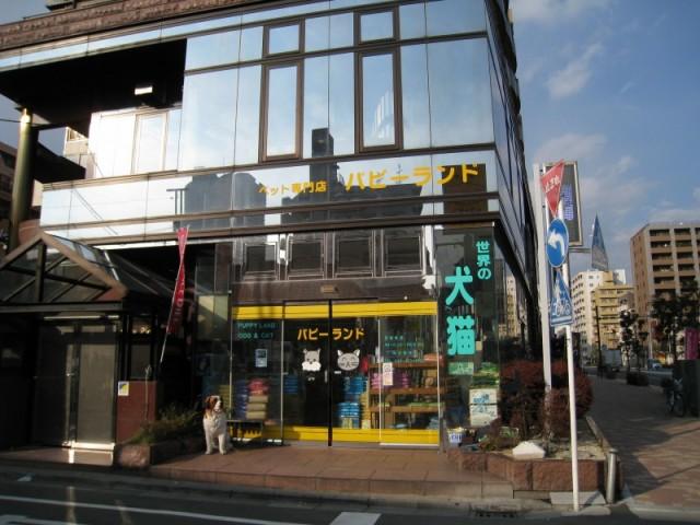 パピーランド丸子橋店